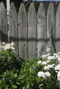 Security and privacy fencing