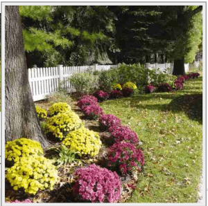 fence-contractor-charles-county-md